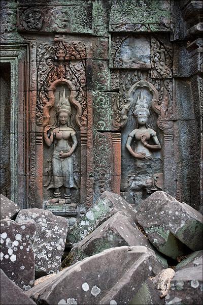 Carvings at Ta Prohm.