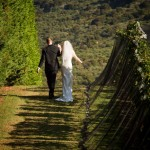 The Wedding of Lisa & David, Waiheke Island, 2010