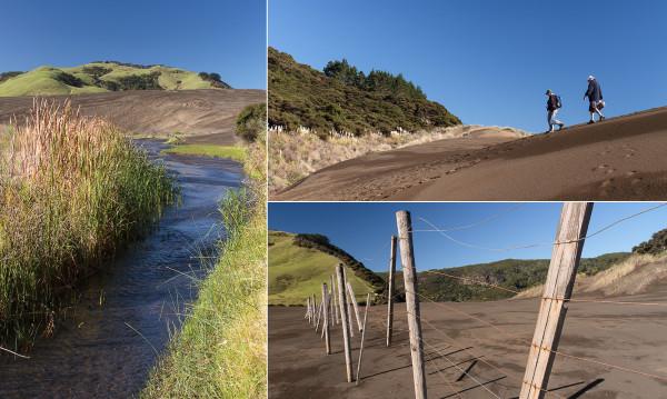 Lake Wainamu, Bethells Beach, Auckland, West Coast, Lake, Sand dunes, black sands