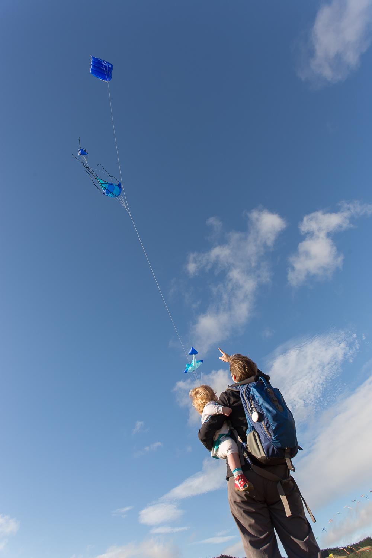 Plimmerton kite festival