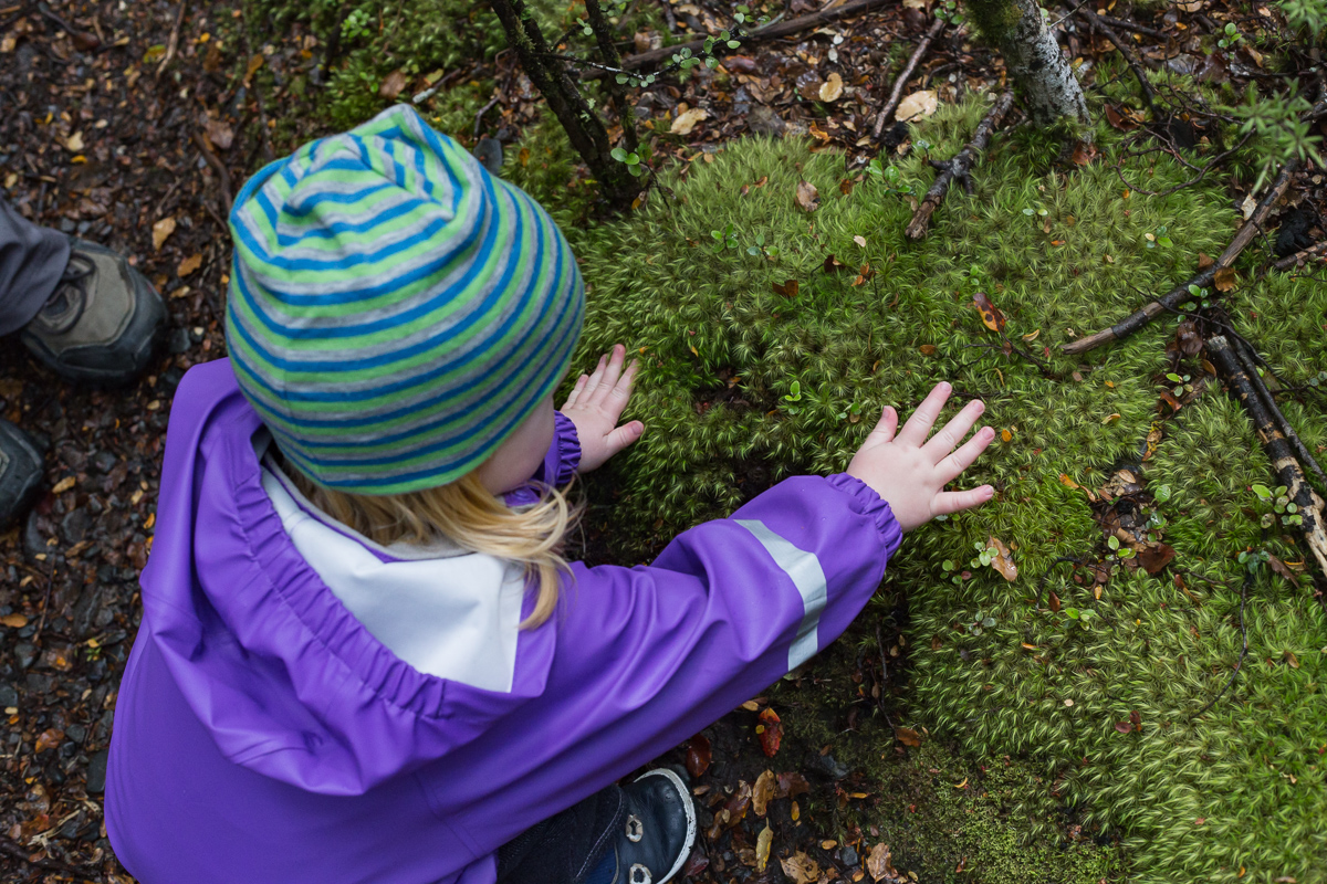Touching the moss