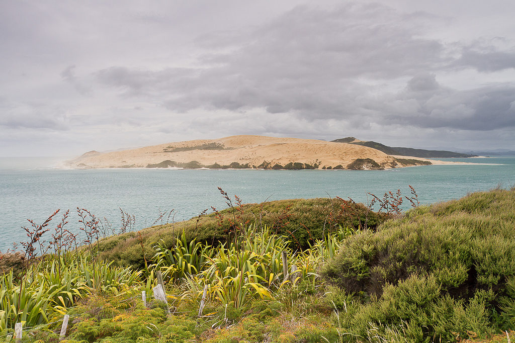 Hokianga Harbour headlands