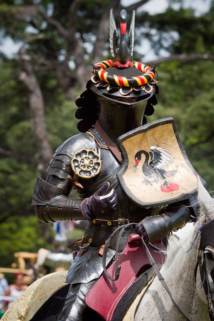 Joust knight