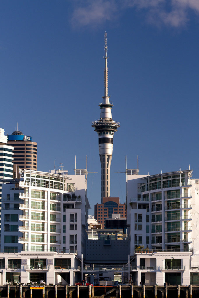 The Sky Tower from the harbour