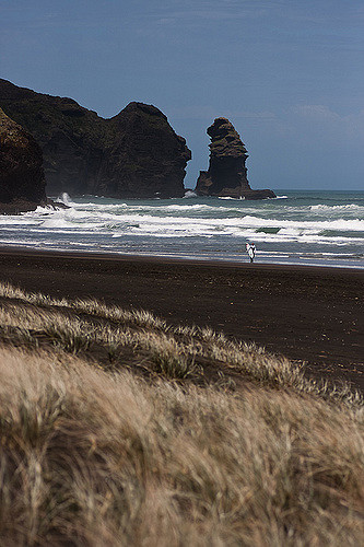 The beach at Piha