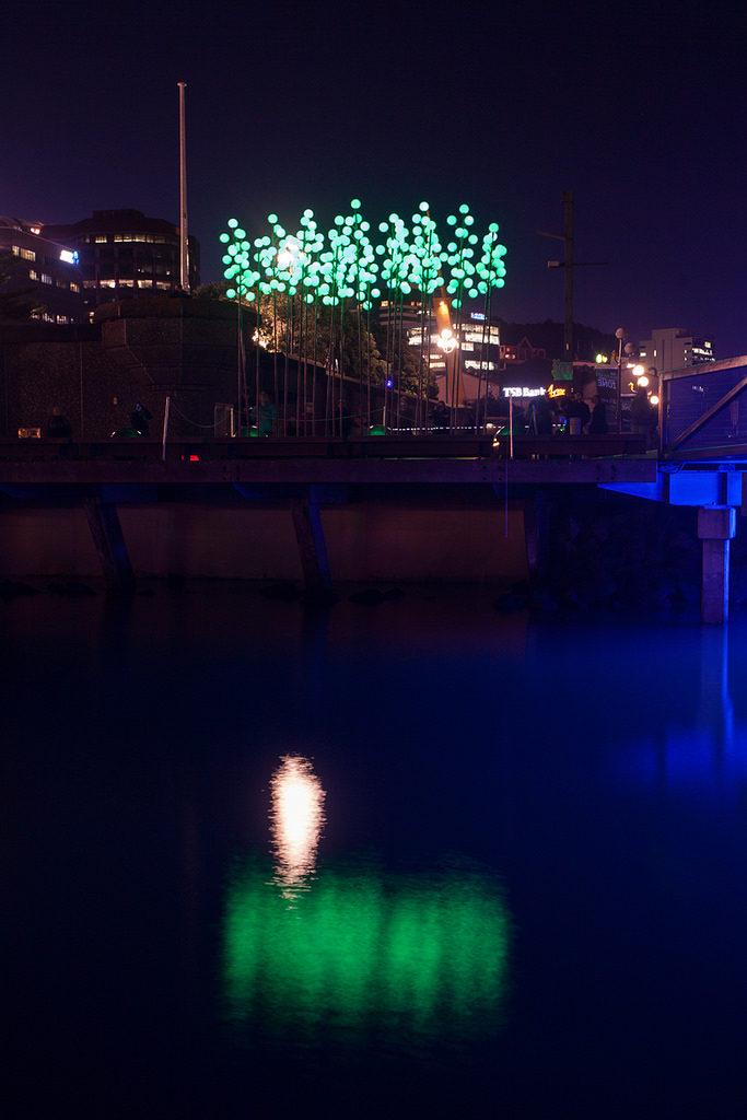 Wellington Lux Festival 2013 - 2567
