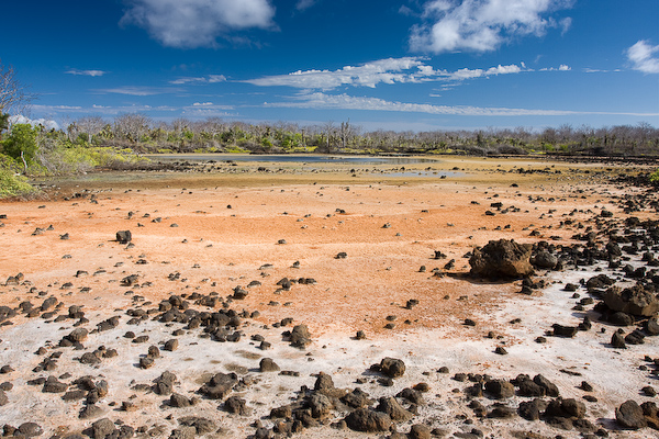 The dry lagoon.