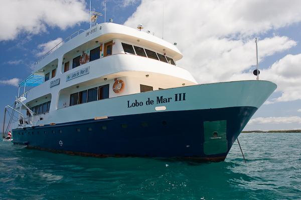 The Lobo de Mar III.