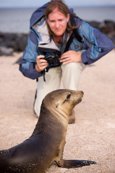 Keryn photographs a young sea lion