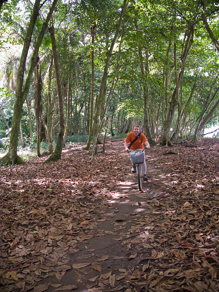 Cycling the jungle track.