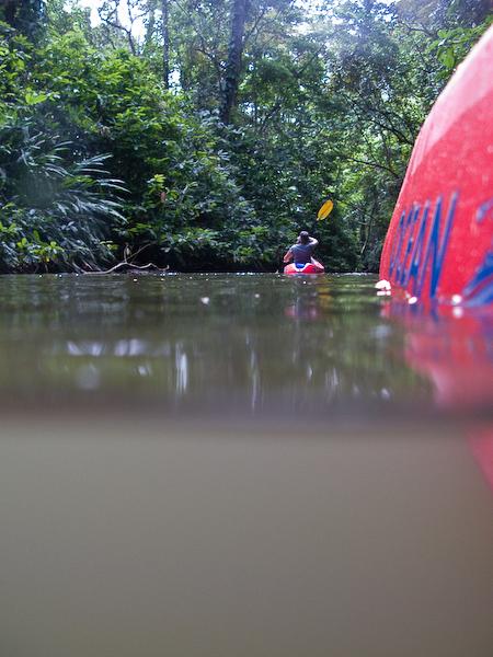 Paddling upstream.