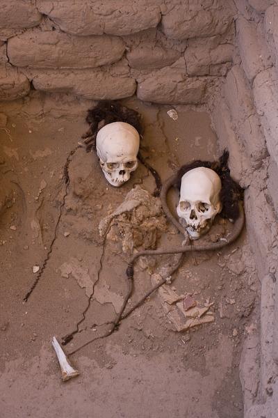 Skulls with hair still intact