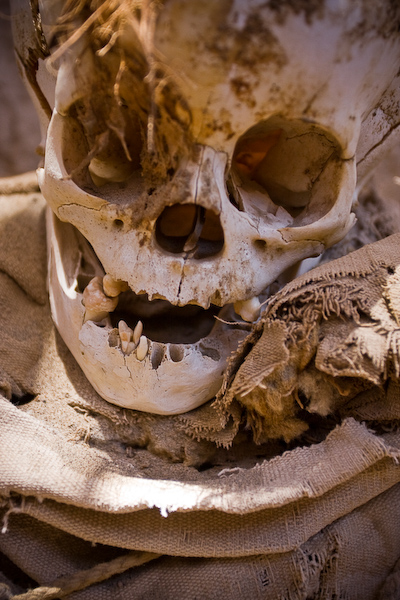 The decaying skull of a buried child